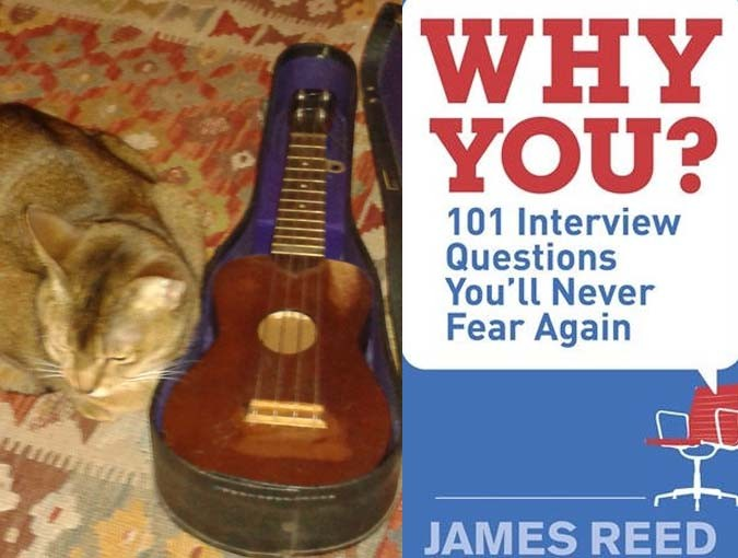 What do slumbering cats, ukuleles and job interview questions have in common?