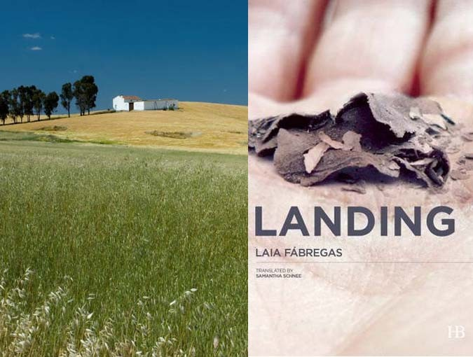 Book of the Week | Landing